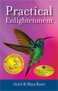 practical-enlightenment-mca