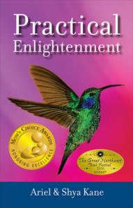 practical-enlightenment-mca