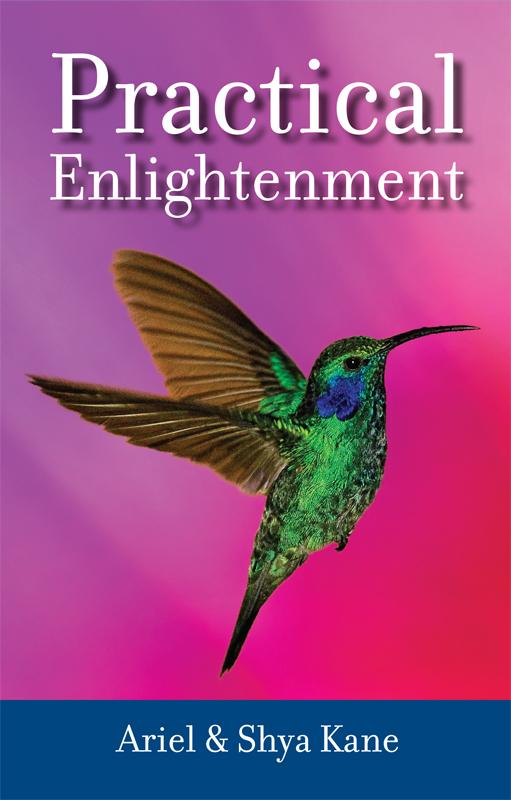 practical-enlightenment-coverLG