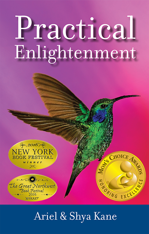 Practical Enlightenment by Ariel & Shya Kane