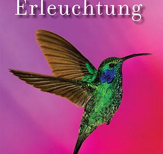 PE_cover-german_web