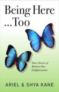 Being Here…Too, Short Stories of Modern Day Enlightenment